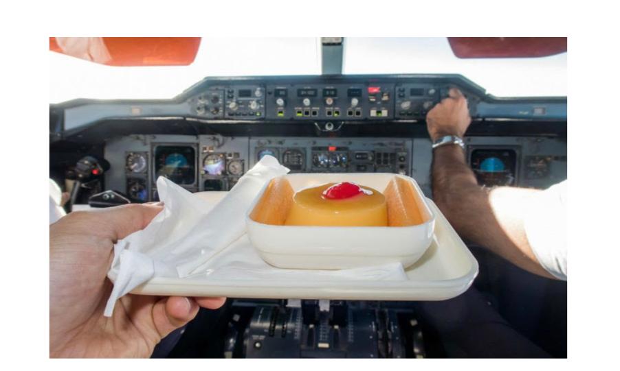Pilotlarda En Çok Rastlanan Hastalıklar